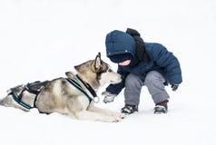 Der kleine Junge und der Hund spielen im Schnee Stockbild
