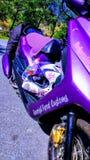 Der kleine purpurrote Dracheroller Stockbilder