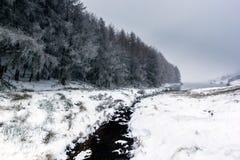 Der kleine Strom, der durch einen Schnee läuft, bedeckte Landschaft mit einer Kappe Stockbild
