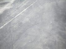 Der Kolibri, Nazca-Linien Stockbild