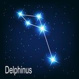 Der Konstellation Delphinusstern in der Nacht Lizenzfreies Stockfoto