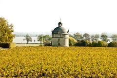 Der Kontrollturm des Chateaus Latour Lizenzfreies Stockfoto