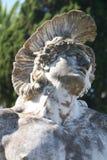 Der Kopf von Achilleus Stockbild