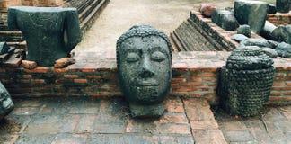 Der Kopf von Buddha stockfoto