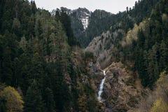 Der Kosakenwasserfall, ist in der kaukasischen Reserve, Arkhyz stockbilder