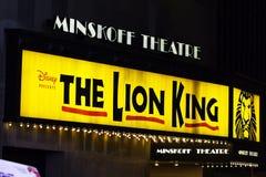 Der Löwe-König Lizenzfreies Stockbild
