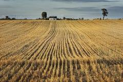 An der Landschaft Landluft Stockfotos