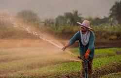 Der Landwirt, der ihre Anlage wässert Stockbild