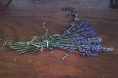 Der Lavendel Lizenzfreie Stockfotografie