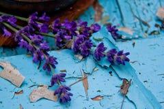 Der Lavendel auf der alten schäbigen Farbe im Dorf Stockfoto