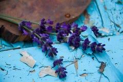 Der Lavendel auf der alten schäbigen Farbe im Dorf Der Sommer Stockbild