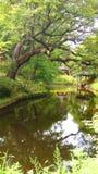 Der legendäre geheime Garten hinter Royal Palace Lizenzfreie Stockfotografie