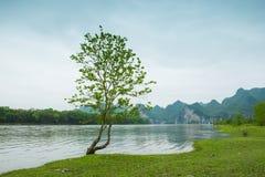 Der Li-Fluss auf beiden Seiten von der Hirtenlandschaft Stockbilder