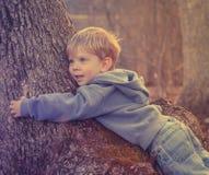 Der Lieblingsbaum des Jungen Stockbild