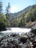 Der mächtige Merced-Fluss 4 lizenzfreies stockbild