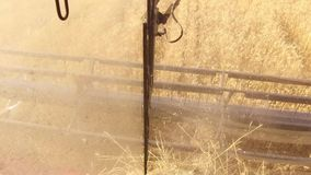 Der Mähdrescher entfernt den Weizen Die Ansicht vom Fahrer ` s Fahrerhaus Die erste Person ` s Ansicht Ernten der Weizenernte stock video footage