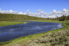 Madison-Fluss-Yellowstone Nationalpark Stockfoto