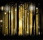 Der magische Wald Lizenzfreie Stockfotografie