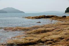 Der majestätische Felsen durch das Meer Stockbilder