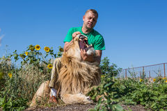 Der Mann öffnet die Kiefer eines Löwes im Safari-Park Taigan, Krim, Stockfotos