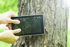 Der Mann bricht den Tablet-PC auf dem Baum lizenzfreie stockbilder