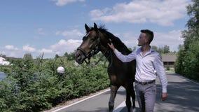 Der Mann, der mit Pferd auf der Straße geht stock footage