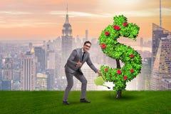Der Mann im stützbaren Investitionskonzept Stockbilder