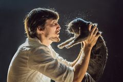 Der Mann ist zu einer Katze allergisch Ein Mann niest wegen der Tatsache, die nahe bei einer Haustier FAHNE, LANGES FORMAT lizenzfreies stockbild