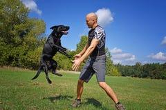 Der Mann springend mit Hund Lizenzfreie Stockfotografie