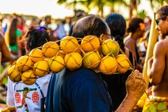 Der Mann und ihre Orangen lizenzfreie stockfotografie