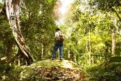Der Mannhippie-Wandererrucksack, der in Wald geht und eine Kamera auf dem Stativ, Fotos machend hält Konzeptwandern der Reise Lizenzfreies Stockfoto