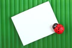 Der Marienkäfer mit einer Karte für Mitteilung Lizenzfreie Stockfotos