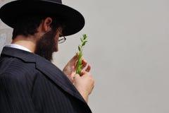 Der Markt auf dem Vorabend von Sukkot Lizenzfreie Stockfotos