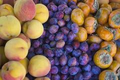 Der Markt-Frucht des Landwirts Stockbilder