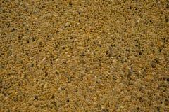 Der Marmor Lizenzfreie Stockbilder