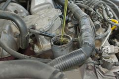 Der Mechaniker, der Schmieröl hinzufügt Stockfotografie