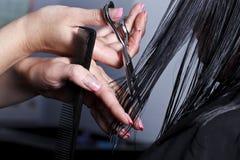 Der Meister der Friseur tut hairdress stockbilder