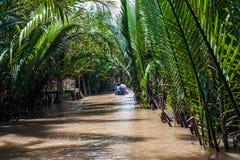 Der Mekong-Delta in Süd-Vietnam Lizenzfreie Stockfotos