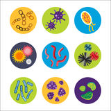 Der Mikrobenikone des Bakterienvirus mikroskopischer lokalisierter menschlicher Mikrobiologieorganismus und Medizininfektionsbiol vektor abbildung