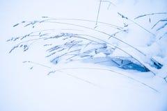 Der minimalistic schöne Naturhintergrund des alten Grases oder des Unkrauts unter dem Schnee im kalten Frost ein bewölkten Tag stockbilder