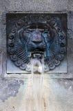 Der mittelalterliche Brunnen des Löwekopfes in Italien lizenzfreie stockfotos