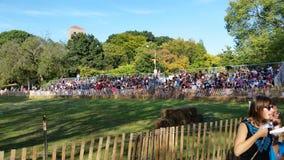 Der mittelalterliche Fort Tryon-Park NYC 166 des Festival-2014 @ Lizenzfreie Stockfotografie
