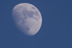 Der Mond lizenzfreie stockbilder