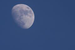 Der Mond Stockbilder