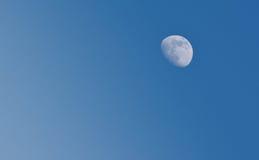 Der Mond im blauen Himmel Stockfotografie