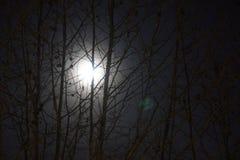 Der Mond ist rund und hell stockbild