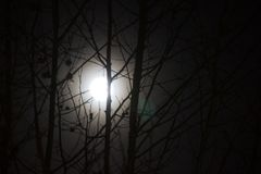 Der Mond ist rund und hell stockfoto