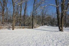 Der Morgen nach dem ersten Schnee stockbild