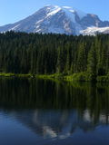 Der Mount Rainier mit Reflexion Lizenzfreies Stockbild