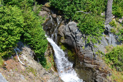Der Mount Rainier, Narada-Wasserfall Stockfoto